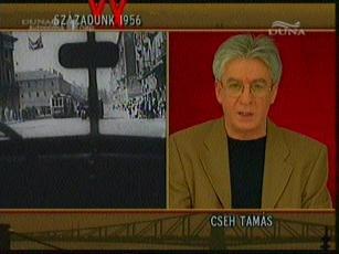 Cseh Tamás [műsorvezető]
