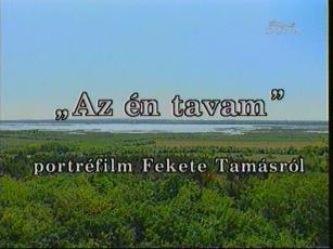 """""""Az én tavam"""": Portréfilm Fekete Tamásról"""