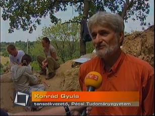 Konrád Gyula, tanszékvezető, Pécsi Tudományegyetem
