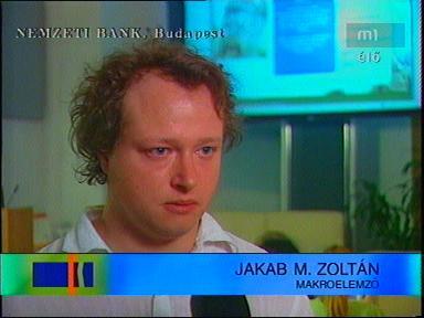Jakab M. Zoltán, makroelemző
