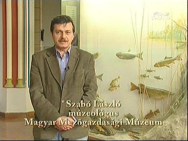 Szabó László, muzeológus, Magyar Mezőgazdasái Múzeum