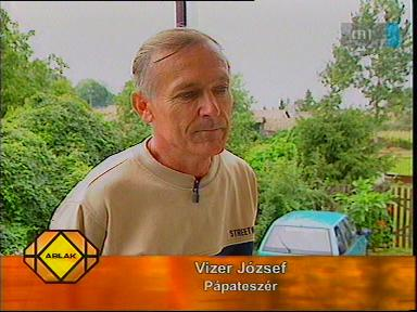 Vizer József, Pápateszér