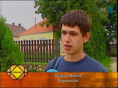 Szalay Bálint, Pápateszér