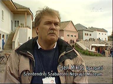 Cseri Miklós, igazgató, Szentendrei Szabadtéri Néprajzi Múzeum