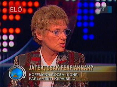 Hoffmann Rózsa, parlamenti képviselő, KDNP