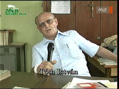 Tóth István
