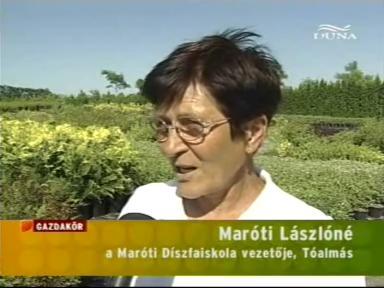 Maróti Lászlóné, vezető, Maróti Díszfaiskola, Tóalmás