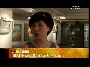 Elise Tseng, főtitkár, Művészeti Galériák Szövetsége