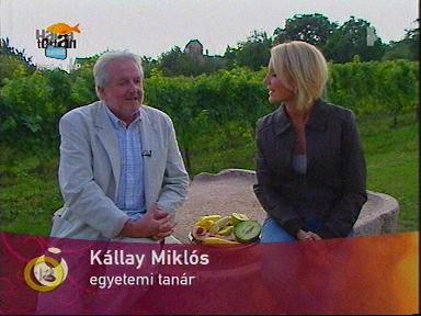 Kállay Miklós, egyetemi tanár