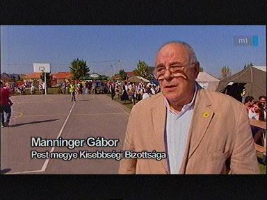 Manninger Gábor, Pest megye Kisebbségi Bizottsága
