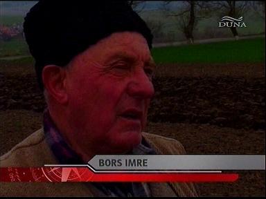 Bors Imre