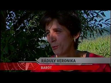 Ráduly Veronika, Barót