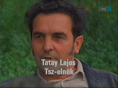 Tatay Lajos, tsz-elnök