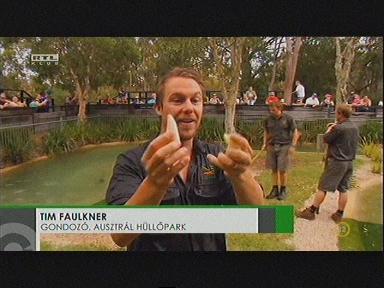 Tim Faulkner, gondozó, Ausztrál Hüllőpark