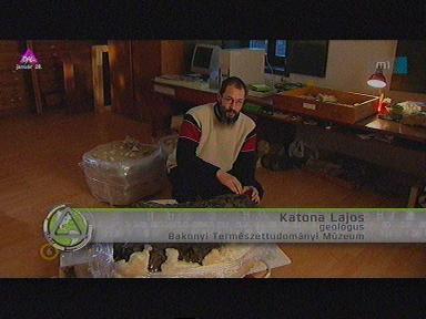Katona Lajos, geológus, Bakonyi Természettudományi Múzeum