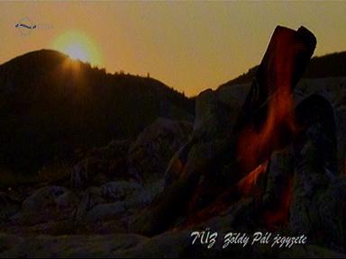 Tűz, Zöldy Pál jegyzete