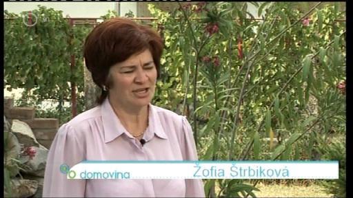 Zofia Strbiková