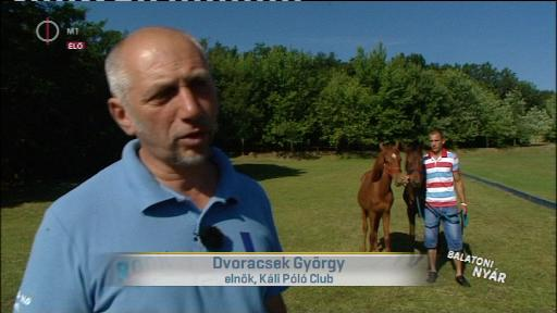 Dvoracsek György, elnök, Káli Póló Club