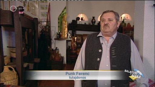 Punk Ferenc, tulajdonos