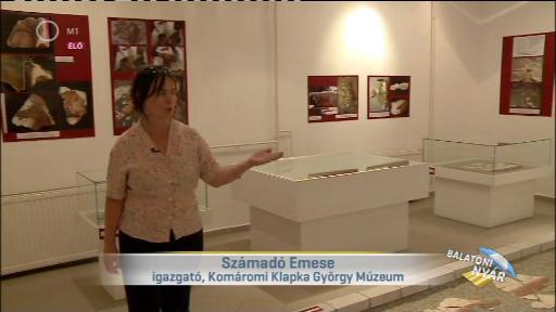 Számadó Emese, igazgató, Klapka György Múzeum, Komárom