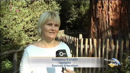 Hanyecz Katalin, igazgató, Szarvasi Arborétum