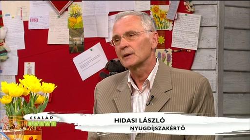 Hidasi László, nyugdíjszakértő