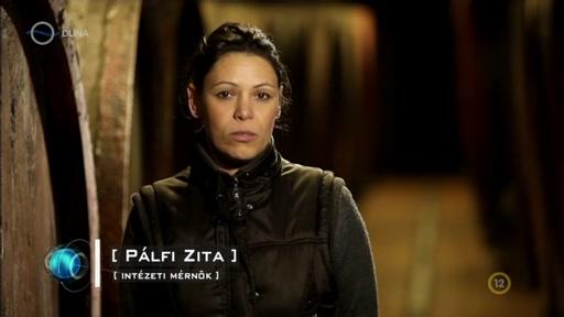 Pálfi Zita, mérnök