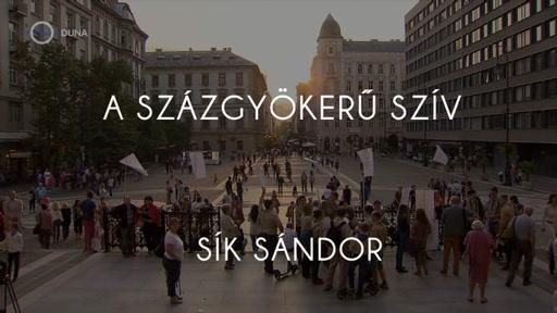 Sík Sándor: A százgyökerű szív