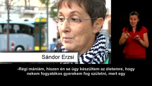 Sándor Erzsi