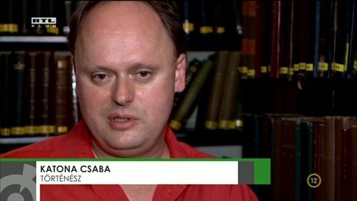 Katona Csaba, történész