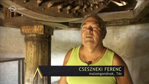 Cseszneki Ferenc, malomgondozó, Tés