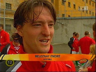 Endre Beleznay net worth
